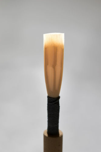 Oboe Reed - Gray Professional
